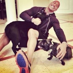 The Rock, WWE, Dwayne Johnson,