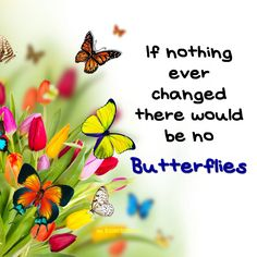 If nothing ever changes there would be no butterflies