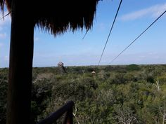SKY, Jungle Maya. Quintana Roo