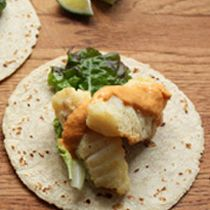 Make Fried Rock Cod Tacos With Pumpkin Seed-Pepper Sauce from Mateo's Cucina Latina in Healdsburg, CA.