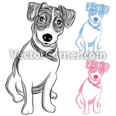 A hand drawn image of a Irish Jack Russell Terrier Dog - royalty free vector illustration.