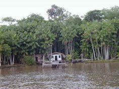 Palafitas de ribeirinhos as margens do Rio Amazonas