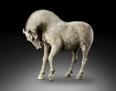 Gisele Croes, Tang dynasty horse, China