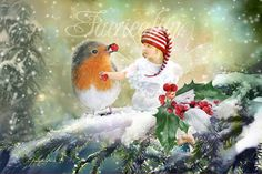 Fairy Print   ' A Winters Feast ' Hand signed by Charlotte Bird fairies