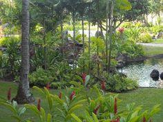 Beautiful Kauai, Hawaii