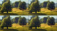 'Wandkacheln Landschaft (2)' von Rudolf Büttner bei artflakes.com als Poster oder Kunstdruck $18.03