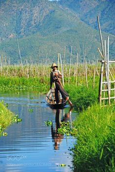"""Gardener. Inle lake. Go to http://iBoatCity.com and use code PINTEREST for free shipping on your first order! (Lower 48 USA Only). Sign up for our email newsletter to get your free guide: """"Boat Buyer's Guide for Beginners."""""""