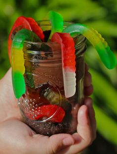 Worms and Dirt in a Jar