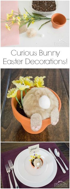 Turn a few cotton balls and felt into a curious little bunny; perfect Easter decorations or table place cards! crafts