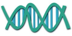 Dna, Helix, Science, Biology, Research