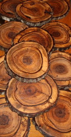 What if you used these wood slices as tiles on a floor? Tree Slices, Wood Slices, Patterns In Nature, Textures Patterns, Wood Patterns, Got Wood, Tree Bark, Wood Carving, Wood Grain