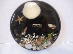 VTG Hawiian Lucite Trivet Sea Shells Coral Round Black Tropical Beach Hawaii