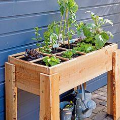 Houten Plantenbak Intratuin.44 Beste Afbeeldingen Van Moestuin Intratuin Potager Garden
