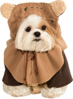 Ewok Pet Costume! My dog will have this!!!!!