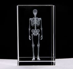 This is the perfect piece for your desk! 5 cm x 5 cm x 8 cm Fall 2018, Holographic, Skeleton, Medicine, Darth Vader, Canada, Desk, Australia, Science