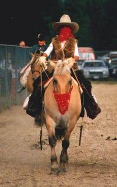 horse bandit costume