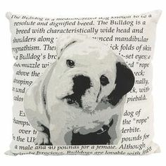 """Add a pop of style to your sofa, arm chair, or window seat with this charming pillow, showcasing a bulldog and typographic motif in black and white.  Product: PillowConstruction Material: Cotton cover and polyester fillColor: Black and whiteFeatures: Insert includedDimensions: 15.75"""" x 15.75"""""""
