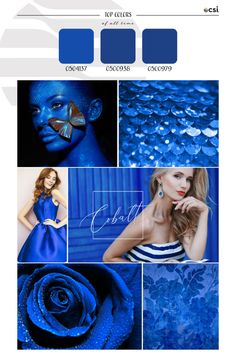 Top ColorWall™ Colors of All Time | Cobalt – eColorWorld Popular Colors, Love Blue, Season Colors, Color Trends, Cobalt, Hue, All About Time, That Look, Colours