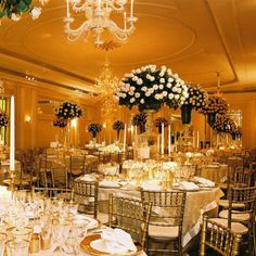 gold and white; Niemierko events