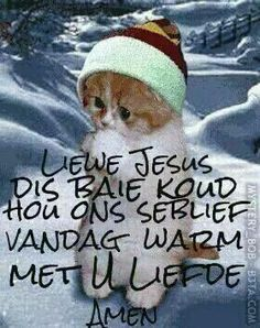 Liewe Jesus dis baie koud .... Hate Summer, Evening Greetings, Afrikaanse Quotes, Goeie More, Angel Prayers, Weather Seasons, Morning Blessings, Day Wishes, Good Morning