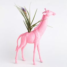 Oh pink giraffe planter, how I wish you could make a home with me!