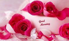 Shayari Urdu Images: Best Roses good morning hd wallpapers
