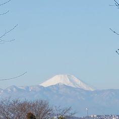 Mt. Fuji from Setagaya