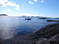 Bumble, Norway
