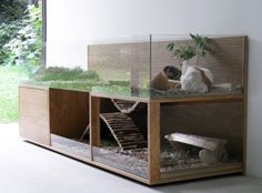 Pet Interiors for guinea pigs.