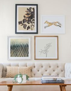 Inspired By Nature: Readying Your Nest for Winter — Minted