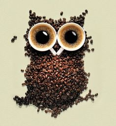 Good Morning. Coffee Owl Greets You with Cups of Courage. « Groonk ...