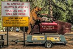 How to be Safe from Bears at Yosemite and Sequoia: Bear Warning at Yosemite National Park