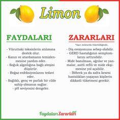 📢İçerisinde barındırdığı zengin vitamin çeşitleri, hoş kokusu ve katmış olduğu ekşimsi tat ile hemen hemen herkesin severek tükettiği bir besindir. Peki limonun faydaları ve zararları nelerdir? Viera, Cantaloupe, Fruit, Lime, Health, Food, Health Care, Eten, Limes