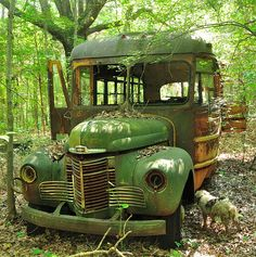 Abandoned green school bus with probably dog pee on the left frontwheel. Abandoned Buildings, Abandoned Houses, Abandoned Places, Abandoned Vehicles, Vintage Trucks, Old Trucks, Automobile, Rust In Peace, Barn Finds