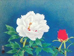 山口華楊,Yamaguchi kayo主な作品と作家画歴をご紹介しています。 / 絵画販売・絵画購入・絵画買取・絵画売買の仲介などいたしております。アートのことならアンシャンテへご相談ください。