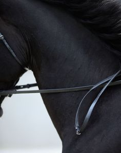 Hermès Sellier on Behance