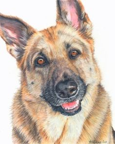 German Shepherd Art Print CANVAS Painting By TheDogLover