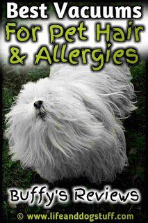 Best Vacuums For Pet Hair And Allergies Pet Hair Pets Best Vacuum