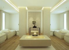 I would love to own a modern, calm, serene, and most importantly, successful day spa.