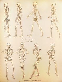 Skeleton in motion ✤ || CHARACTER DESIGN REFERENCES | キャラクターデザイン • Find more at https://www.facebook.com/CharacterDesignReferences if you're looking for: #lineart #art #character #design #illustration #expressions #best #animation #drawing #reference #anatomy #traditional #sketch #artist #pose #gestures #how #to #tutorial #comics #conceptart #modelsheet #bones #skulls || ✤