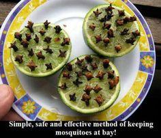 Lime & cloves = no skeeters