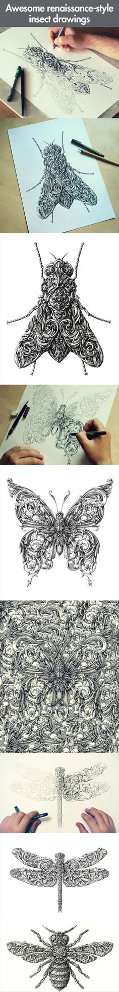 Awesome renaissance-style insect drawings This would be a cool tattoo Doodles Zentangles, Insect Art, Renaissance Fashion, Doodle Art, Amazing Art, Epic Art, Painting & Drawing, Line Art, Creative