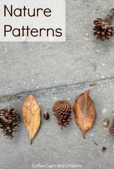 Teach Kids Math Patterns Using Nature! There are so many math patterns in nature–which makes it the perfect place for kids to practice! Going outdoors is a great way to play with math and this nature pattern activity requires no prep on your part so it c Maths In Nature, Nature Activities, Autumn Activities, Activities For Kids, Outdoor Activities, Learning Activities, Outdoor Education, Outdoor Learning, Early Education