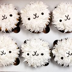 Come in and get your cute and adorable cupcakes at the House of Clarendon!