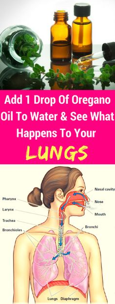 Add 1 Drop Of Oregano Oil To Water & See What Happens To Your Lungs! Lung Cleanse, Oregano Oil Benefits, Healthcare News, Environmental Change, Health Routine, Burn Belly Fat Fast, Seasonal Allergies, Healthy Exercise, Pregnancy Health