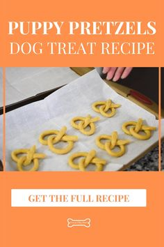 Dog Cookie Recipe Easy, Banana Dog Treat Recipe, Dog Cookie Recipes, Easy Dog Treat Recipes, Homemade Dog Cookies, Dog Biscuit Recipes, Baked Dog Treat Recipe, Gluten Free Dog Treat Recipe, Recipe For Dog Biscuits