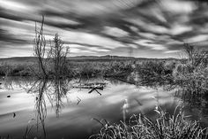 mono,monochrome,black and white,landscape,nature,water,lake, mountains,winter,sunset,sunrise,reflections,photography,water,tree,forest,granada,spain