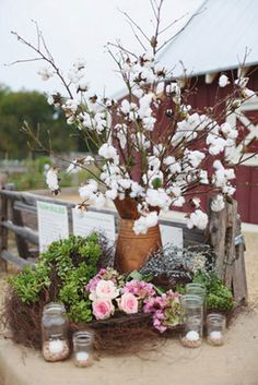 Branches and raw cotton bolls in rustic arrangement at farm wedding.