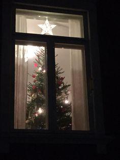 Joulukuusi ja ikkunatähti