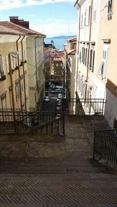 Trieste, Via Ciamician Trieste, Trekking, Places, Nostalgia, Pictures, Travel, Illustration, Italy, Houses
